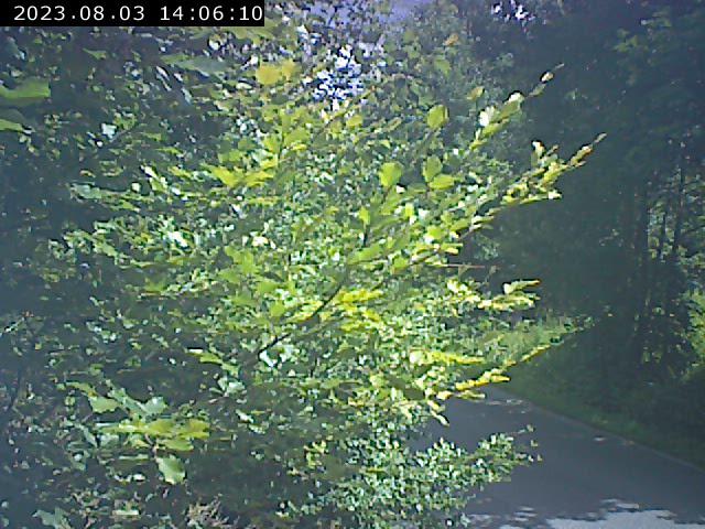 Webcam Skigebied Liberec cam 3 - IJzergebergte